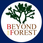 150729  beyond the forest new logo
